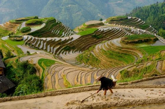 Chinese rice farmer, Seven Stars and Moon viewpoint, Dragon's Ba
