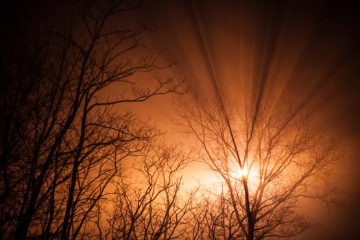 orange-ray-of-sunshine-sun-1411-525x350