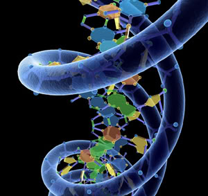 FaintedBrain_DNA