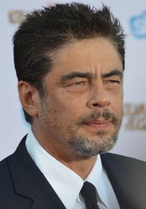 Benicio_Del_Toro_-_Guardians_of_the_Galaxy_premiere_-_July_2014_(cropped)