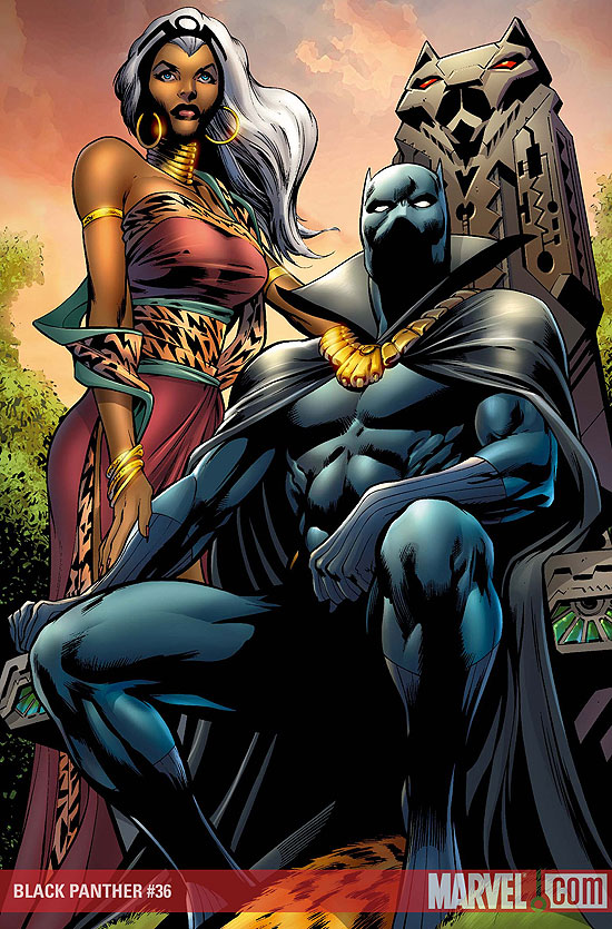 3924468-1163624-black_panther_and_storm