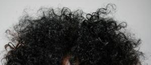 Wild_hair