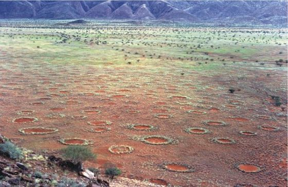 Fairy circles in the Marienflusstal area in Namibia